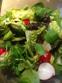 Salade bij het hoofdgerecht. Romeinse sla met waterkers, tomaten en radijsjes.